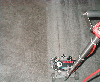 Carpet Cleaning   All Seasons Carpet Cleaning